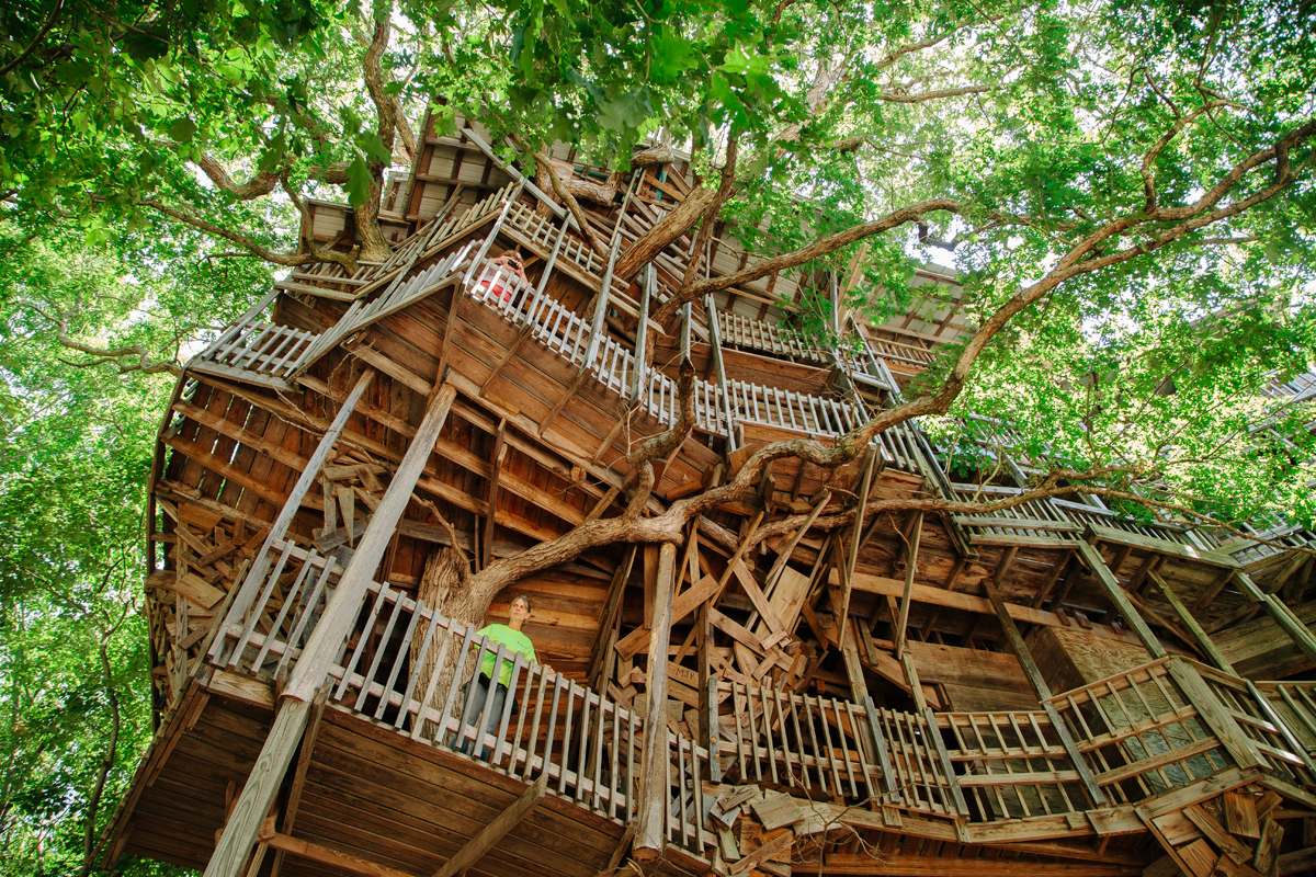 World S Largest Treehouse For Le Monde David Walter Banks